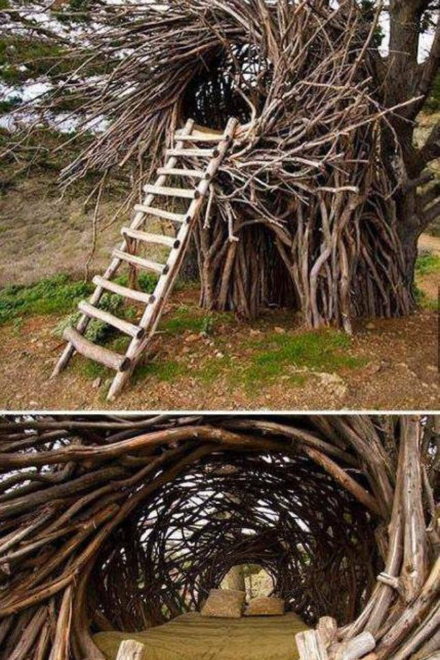 Nest tree house