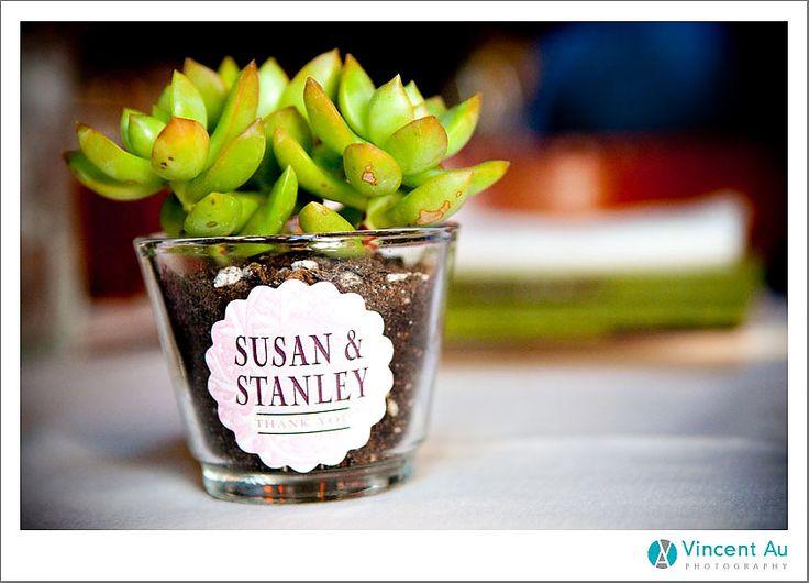 succulant wedding favor: Wedding Photography, Restaurant Wedding, Wedding Plants, Plant Wedding Favors, Plants Wedding Favors, Wedding Honeymoons