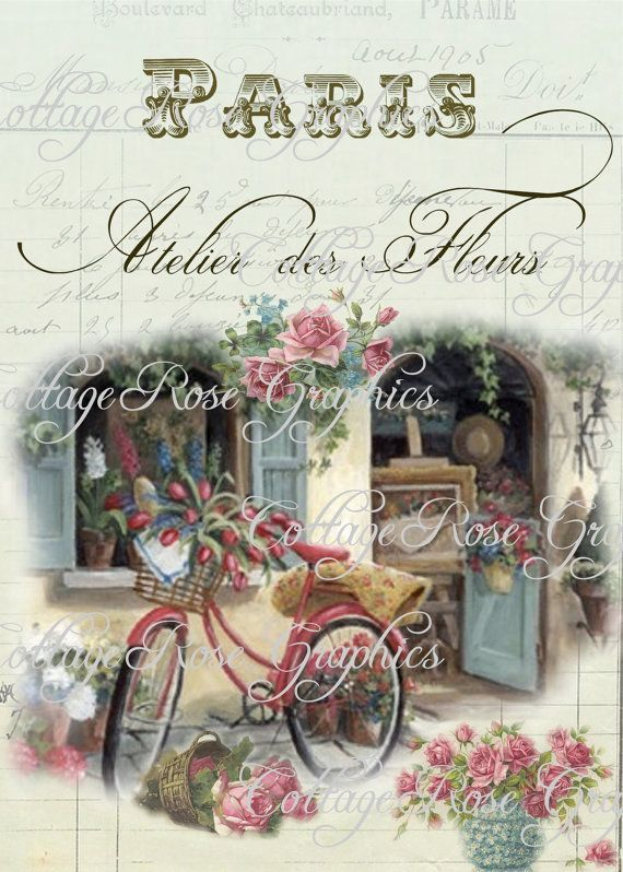 Large digital download Paris French flower shop pink roses
