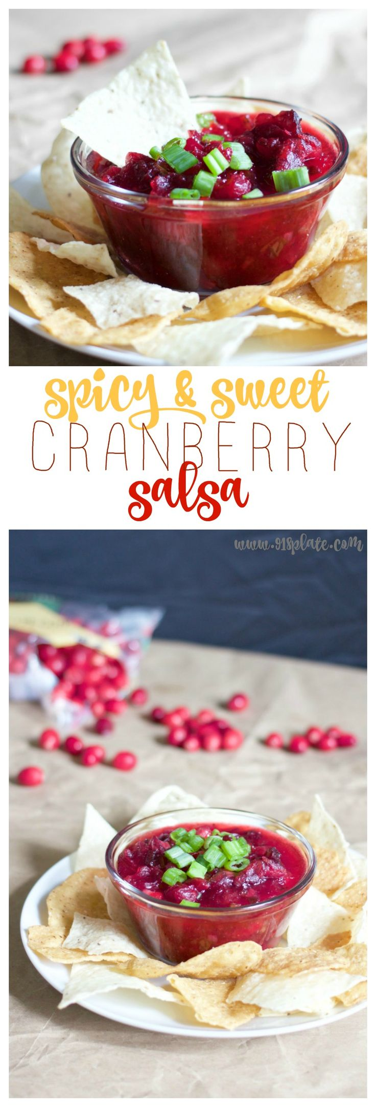 1000+ ideas about Cranberry Salsa on Pinterest ...