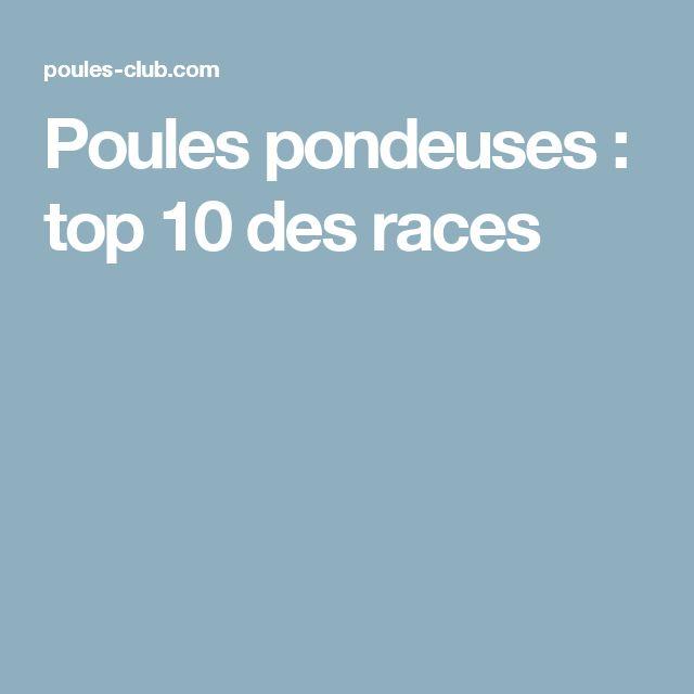 25 best ideas about races de poules pondeuses on pinterest avoir des poule - Toutes les races de poules pondeuses ...