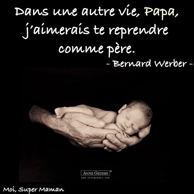 Citation de Bernard Werber  www.Facebook.com/MoiSuperMaman  (parent - papa - enfant)