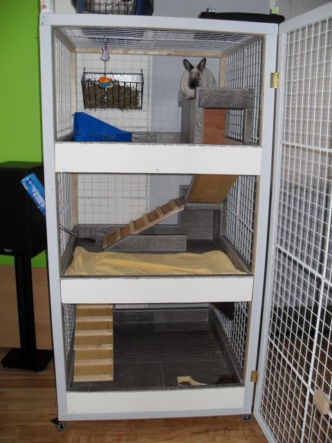 The inside of a bunny condo. Mine have a large pen, but I love the idea of a multi-story structure they could explore. Perhaps only the 2nd & 3rd floors would need a door for safety.