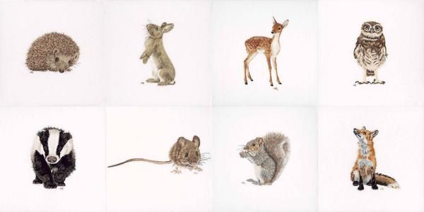 This is a collection of eight embroidered pieces created using silk shading to create some of the most iconic animals found on the British Isles.