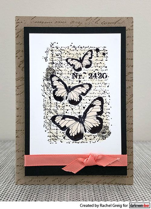 Colouring with Distress Markers. Card by Rachel Greig using Darkroom Door Butterfly Script Stamps