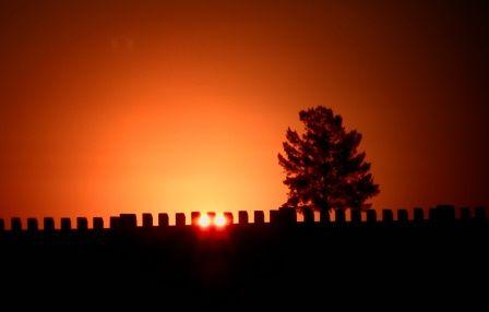 Freestate Sunset