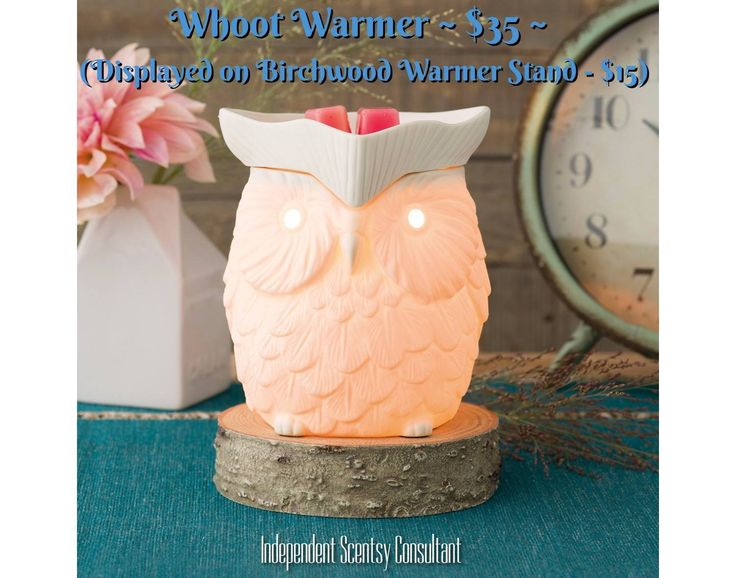 Whoot Scentsy warmer, a classic, perched on the new Birchwood cord concealing warmer stand.  Find me on Facebook, Tracy Todaro Independent Scentsy Consultant and browse at:  https://tracytodaro.scentsy.us