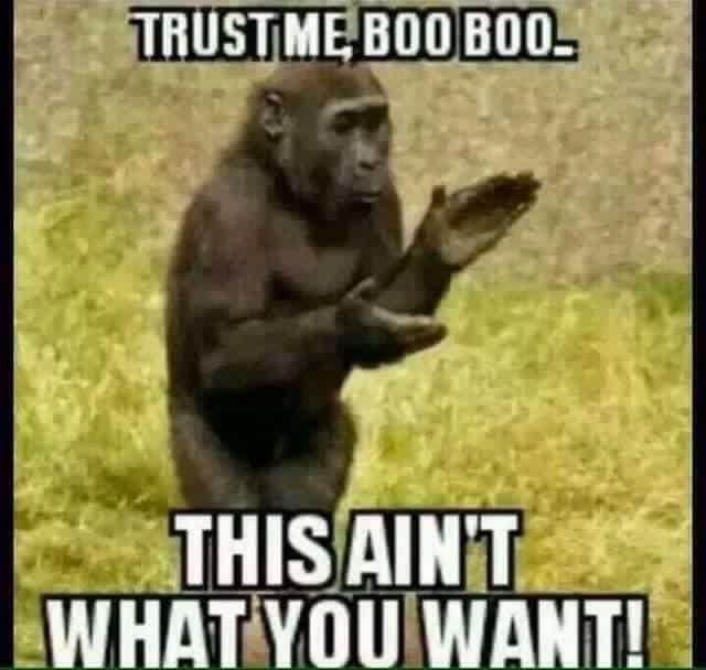 0b4210838bb62985ec09eeed3883aa6c teacher memes dead 107 best memes images on pinterest memes, funny stuff and funny shit,Dead Monkey Meme