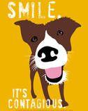 Glimlach, poster van hond met Engelse tekst: Smile, it's contagious