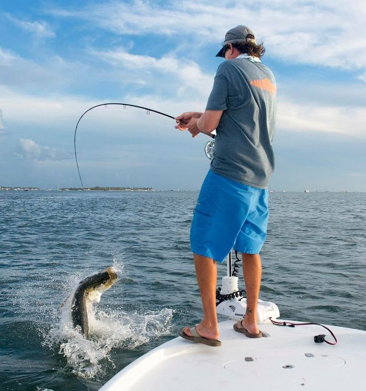 Justin Rea of Sting Rea Charters battles a tarpon on a fly rod Monday off Key West. The fish was released. Photo: Rob O'Neal. #SimplyTheKeys #flkeys #keywest #fishing