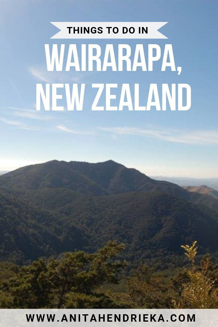 Things To Do In Wairarapa New Zealand Food Accommodation More
