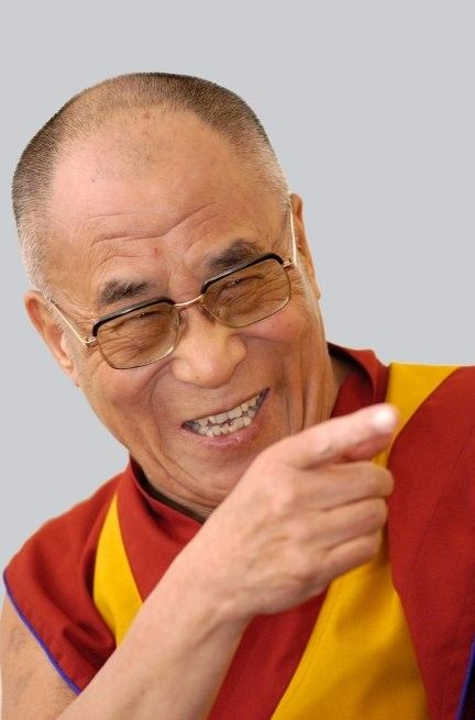 """"""" I believe all suffering is caused by ignorance. People inflict pain on others in the selfish pursuit of their happiness or satisfaction. Yet true happiness comes from a sense of peace and contentment, which in turn must be achieved through the cultivation of altruism, of love and compassion, and elimination of ignorance, selfishness, and greed."""" -Dalai Lama"""