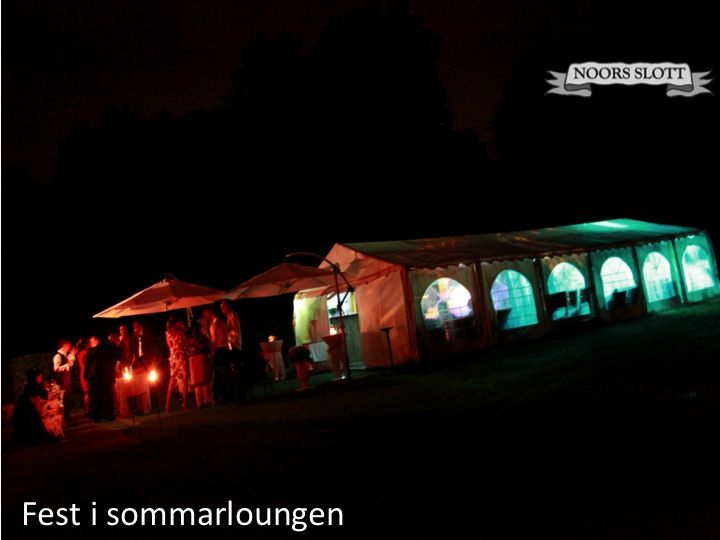 fest, sommarkväll, kväll, tält, bröllop