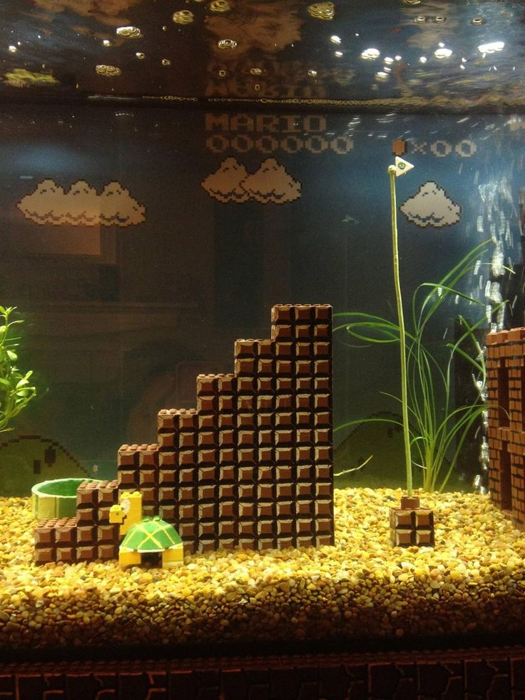 Super Mario Bros. iconic world 1-1 inside a 55 gallon fish tank.