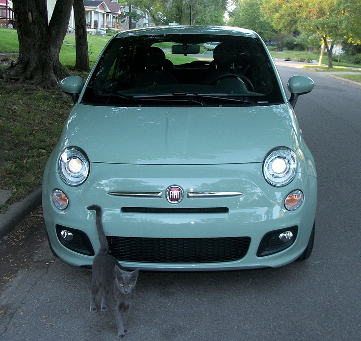 30 Best Images About Fiat On Pinterest