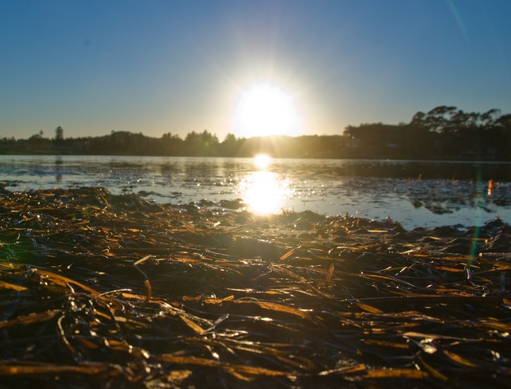 Sunrise over Narrabeen Lake - Northern Beaches of Sydney