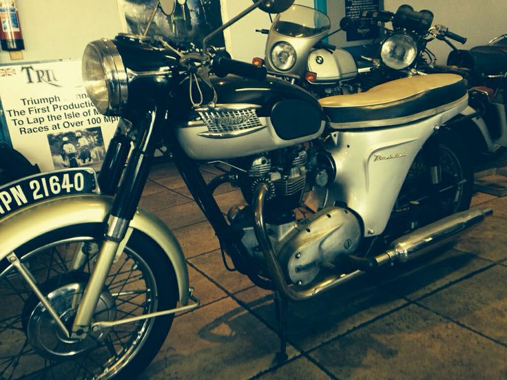 My new baby!! 1965 Triumph Thunderbird