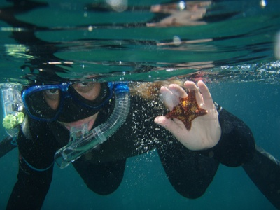 Best Marine Biology And Study Abroad Images On