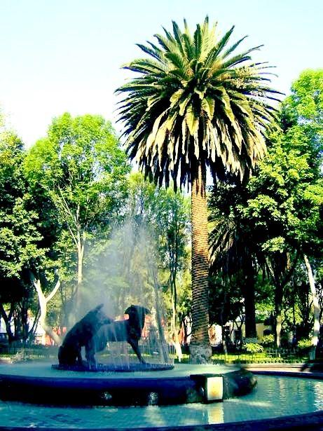 Coyoacan / México City