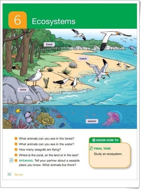 """Unidad 6 de Natural Science de 2º de Primaria: """"Ecosystems"""""""