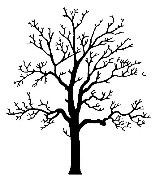 25 Best Ideas About Tree Clipart On Pinterest Felt Applique