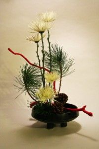 Christmas ikebana with chrysanthemums and pine
