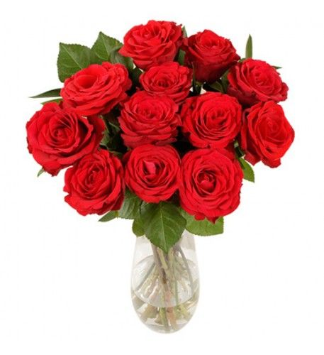 No other flowers speak of love in the same way as red roses. This is a simple traditional red rose bouquet to give to someone special. It contains a dozen short-stemmed red roses and comes presented as giftwrapped bouquet.