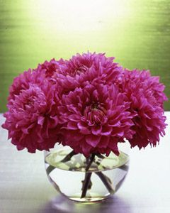how to arrange flowers like a florist - great tips on how to arrange flowers in a bubble bowl - AND lots of great decorating tips on this blog as well