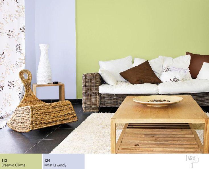 Pokój dzienny wkolorze zielonym