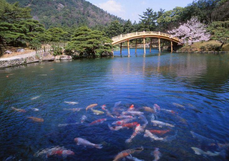 Ritsurin Park. Looking for more information about Kagawa? Go Visit Kagawa Prefecture Tourism Association.  http://www.my-kagawa.jp