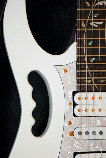 Steve Vai Ibanez Jem its fretboard is customize by Steve Vai himself
