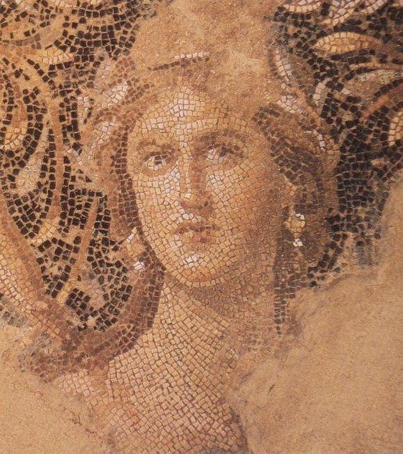 A roman mosaic #roman #mosaic