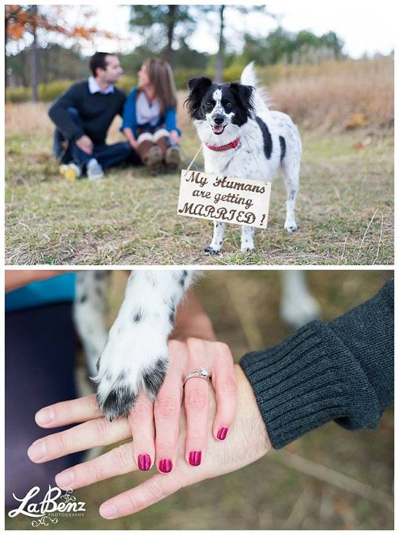 Wood Engraved My Humans are getting Married Sign Save the Date Dog Photography Props Rustic Wood Engraved Wedding Ring Bearer Flower Girl on Etsy, $33.00