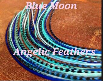 #angelicfeathers #featherextensions #feathers #wholesalefeathers