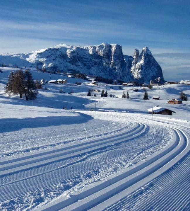 Hotel Cavallino d'Oro - Castelrotto - Alpe di Siusi - Dolomiti