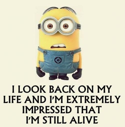 Top 29 Latest Funny Minion Quo... - Minions, Quotes, Sayings