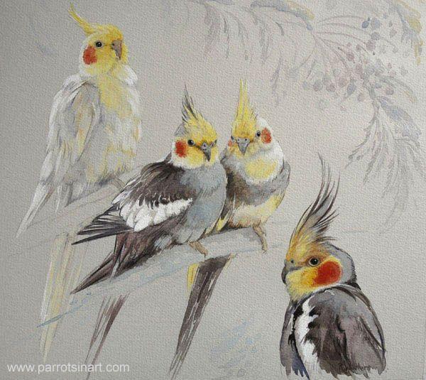Parrots in Art - aquarellen van papegaaien