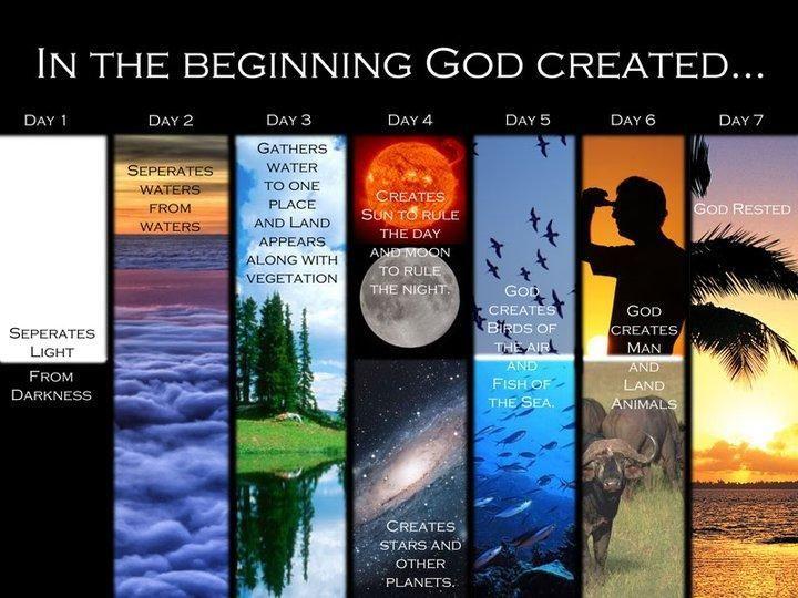 14 best Creation stories images on Pinterest   Sunday school, School ...