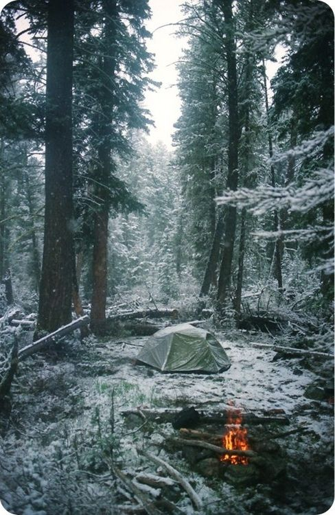 Winter solitude. Winter camping.