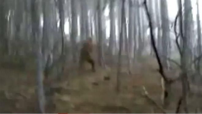 11 most mystifying Bigfoot sightings | Fox News