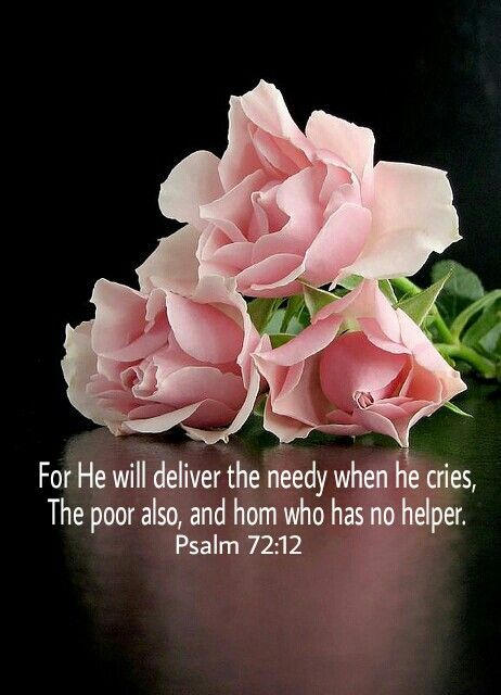 Psalm 72:12 ~ For He will deliver the needy who cry out, the afflicted who have no one to help [NIV]