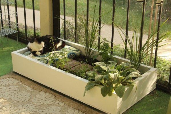 DIY outdoor cat lounge