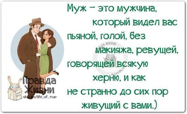 https://pp.vk.me/c540106/v540106334/1c4e4/mRvOGx7XDLc.jpg