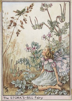 Illustration for the Stork's-Bill Fairy from Flower Fairies of the Wayside. A girl sits on the ground talking to a grasshopper above her on a blade of grass.    Author / Illustrator  Cicely Mary Barker