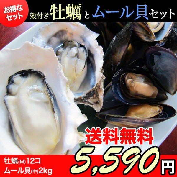 三陸石巻雄勝の浜でとれたプリプリの牡蠣を味わう!       殻付き牡蠣(Mサイズ:150~200g) 12個&ムール貝(Mサイズ)2kg~かき/カキ/ムール貝/産地直送/BBQ