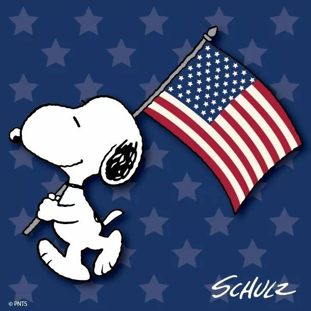 Snoopy & American flag