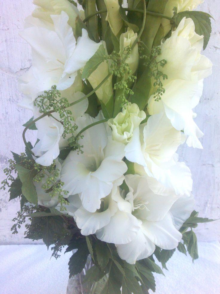 Белые крупные цветы гладиолуса сорта Бангладеш