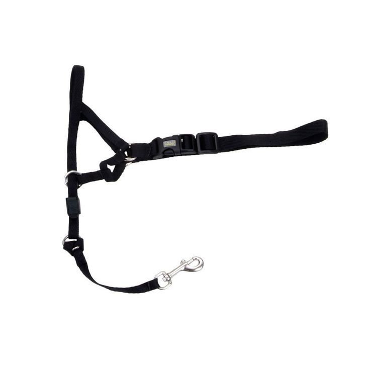 Holt Head Collar Black Size 2 *** Be sure to check out this awesome product. (This is an affiliate link and I receive a commission for the sales)