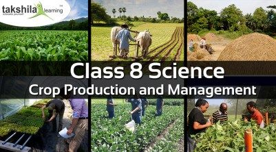 class-8-science-ncert-solution-crop-production-and-management Best Online school classes offering class 8 science with NCERT guide/solutions/experiments/Notes/ study material,sample/question paper on CBSE/ICSE.