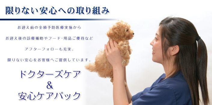 ペットの専門店コジマ ペット 股関節形成不全 ペットショップ